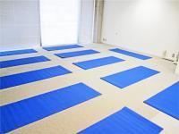 Yoga Space シャンティ Mind 大山教室